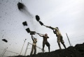 China, India may seek better quality coal