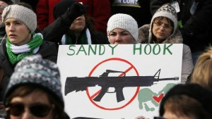 People hold signs memorializing Sandy Hook Elementary School, where 26 children and adults were killed in a mass shooting in December, as they participate in the March on Washington for Gun Control on the National Mall in Washington, January 26, 2013. REUTERS/Jonathan Ernst  (UNITED STATES - Tags: POLITICS CIVIL UNREST) - RTR3D02N