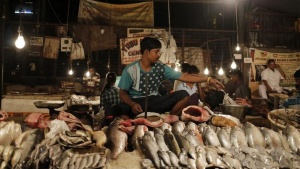 A vendor sells fish in a market in New Delhi September 12, 2014. REUTERS/Anindito Mukherjee/Files
