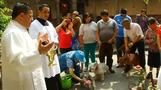 Animal blessing in Mexico, Rhinos on the loose in Israel