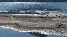 Waters running dry at Rio 2016 rowing and canoe site