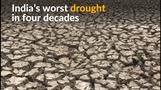 Indian regions hit by worst drought in four decades