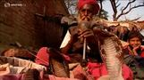 Indian snake charmers struggle to keep trade alive