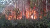 Florida fire destroys homes, forces evacuations