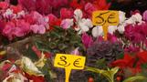 Inflation surge keeps pressure on ECB