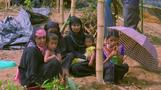 'They're slaughtering us': Rohingya Muslims flee Myanmar