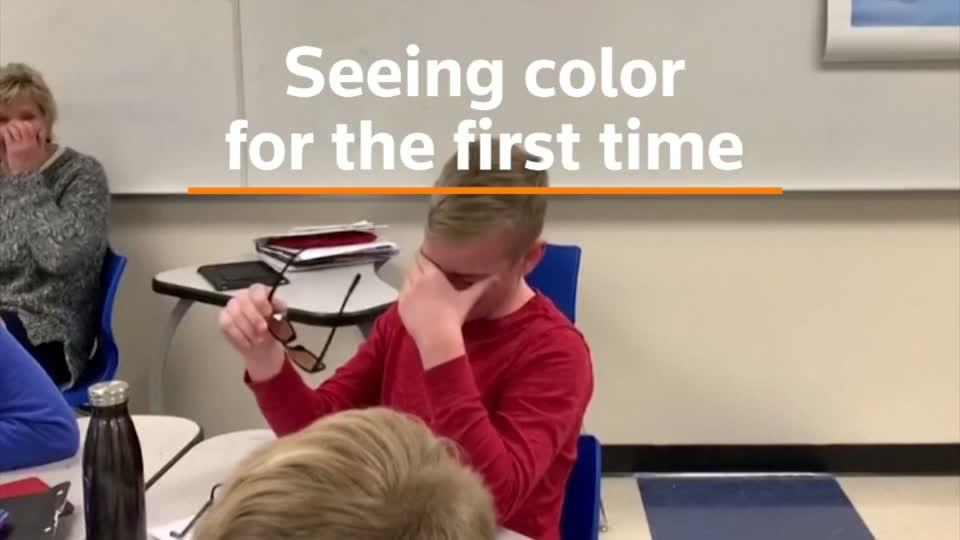 Color-blind boy cries after seeing color for the first time