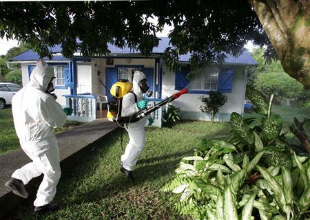 Workers spray pesticide in a mosquitoe-infected zone in Paniany, on the French Indian Ocean island of La Reunion, February 26, 2006. Evidence that pesticides can cause Parkinson's disease is stronger than it has ever been after a meeting of experts who have put together links in animals and people, scientists say. REUTERS/Philippe Wojazer