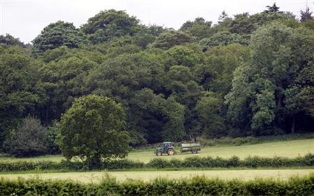 A farmer works in a field bordered by woodland, in Charnwood, June 14, 2005. The government should work for the scrapping of the European Union's farm policy and its replacement with a rural policy, a parliamentary committee said on Wednesday. REUTERS/Darren Staples