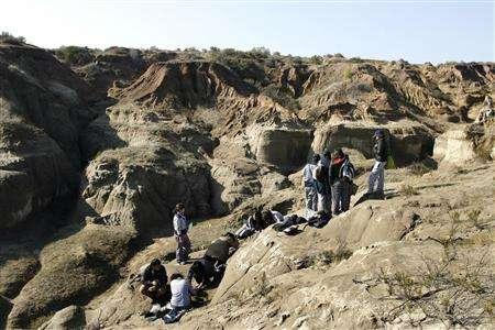 A general view of the area where students found fossils in Los Maitenes town, about 160 km (99 miles) northwest of Santiago, June 26, 2007. In the Town of Los Maitenes, in the central coast of Chile, a group of secondary students discovered some fossil remains of what could be a prehistoric whale cemetery during a workshop of paleontology. REUTERS/Eliseo Fernandez