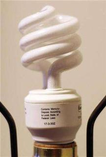 A compact fluorescent light bulb is pictured in this file photo on March 28, 2007. Environmentalists and some of Europe's biggest companies have formed an unusual alliance to try to stop the European Union from extending anti-dumping duties on Chinese energy-saving light bulbs for one more year. REUTERS/Hyungwon Kang