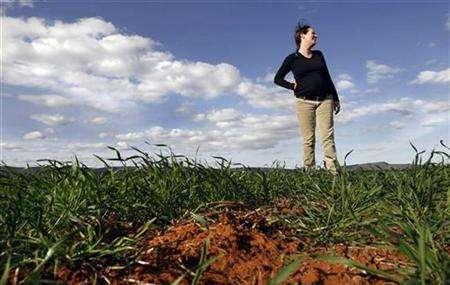 A woman stands on a dying wheat field owned by her employer Casella Wines near Griffith, 490km (305miles) west of Sydney, August 22, 2007. Australia's drought could cut the 2008 wine grape vintage by more than half, industry groups said on Monday. REUTERS/Tim Wimborne