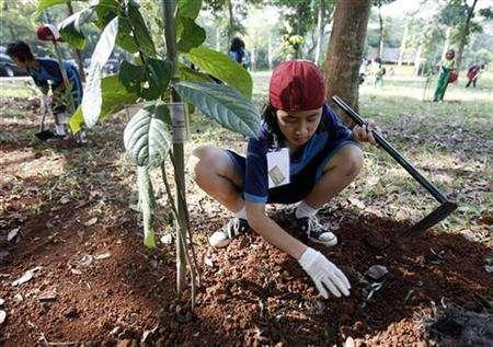 Students plant saplings in Cibubur, on the outskirts of Jakarta, December 1, 2007, as part of a nationwide campaign to plant 10 million trees ahead of the high-profile U.N. conference on climate change in Bali next week. REUTERS/Supri