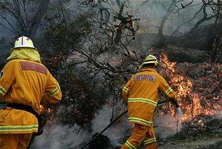 Firefighters extinguish a bushfire in Sydney's northern suburbs October 3, 2007. Australia endured bushfires, floods and record high temperatures in its drought-ravaged foodbowl in 2007 as global warming brought the nation's sixth hottest year on record, the weather bureau said on Thursday. REUTERS/Mick Tsikas