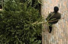 <p>Un Allemand de Mönchengladbach a voulu lancer son sapin de Noël par la fenêtre mais a suivi le conifère dans sa chute. L'homme, qui a fait une chute de sept mètres, a été hospitalisé dans un état critique. /Photo prise le 6 janvier 2008/REUTERS/Luke MacGregor</p>