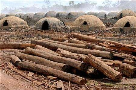 Logs cut from virgin Amazon rainforest lie next to the nearly 1,200 ovens used to turn the wood into charcoal for use in iron smelters and for home use, just outside the town of Ulianopolis in Para state, Brazil, July 5, 2007. REUTERS/Paulo Santos