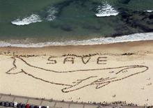 <p>Immagine di una manifestazione per la salvaguardia della balene in una spiaggia australiana. REUTERS/Icon Images/Spectral Q/Handout (AUSTRALIA). EDITORIAL USE ONLY. NOT FOR SALE FOR MARKETING OR ADVERTISING CAMPAIGNS.</p>