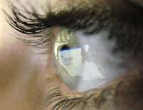 <p>La pagina Web di Google riflessa nell'occhio di un navigatore. REUTERS/Darren Staples (BRITAIN)</p>