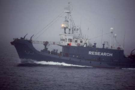 Yushin Maru, a boat of the Japanese whaling fleet, is seen in the Southern Ocean Whale Sanctuary by the Greenpeace ship Esperanza, January 12, 2008. REUTERS/REZAC 2008/Greenpeace/Handout