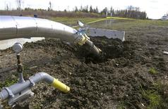 <p>Damage caused to a natural gas pipeline is seen east of Dawson Creek, British Columbia, in this October 12, 2008 handout released by the Royal Canadian Mounted Police (RCMP). REUTERS/RCMP/Handout</p>