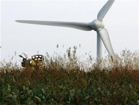 A farmer works near 100-metre-tall (328-foot-tall) wind turbine at the Electric Power Development Co., Ltd's Nunobiki Plateau Wind Farm in Koriyama, north of Tokyo November 8, 2007. REUTERS/Toru Hanai