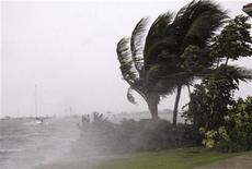 <p>Nella fotografina un'immagine delle raffiche di vento provocate dall'uragano Paloma alle isole Cayman a novembre. REUTERS/Jill Kitchener</p>
