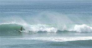 <p>Hawaiian-born Dante Tabasa surfs on a wave in Kenting in an undated photo. As typhoons approach Taiwan in the second half of every year, a few lonely foreign-born surfers take on the wind-whipped waves, sparking breathless commentary from local television stations. REUTERS/Handout</p>
