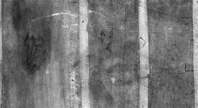 <p>Detalles de una imagen infrarojo divulgada por el museo Louvre de Francia, 18 dic 2008. Un curador del Museo del Louvre de París tropezó con unos bosquejos hechos en la parte de atrás de una pintura de Leonardo da Vinci, que podrían ser obra del pintor italiano, según dijo la pinacoteca el jueves. REUTERS/C2RMF/E.Lambert</p>
