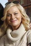 "<p>Actress Amy Poehler from the film ""Spring Breakdown"" poses for a portrait at the 2009 Sundance Film Festival in Park City, Utah, January 16, 2009. REUTERS/Danny Moloshok</p>"