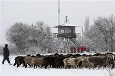 <p>Местный житель пасет овец вблизи американской базы Манас рядом с Бишкеком, 4 февраля 2009 года Добившись закрытия военной базы США в Киргизии, Россия начинает игру по переделу сфер влияния в Центральной Азии и Афганистане и в случае неудачи рискует упустить шанс улучшить отношения с Вашингтоном, считают аналитики. REUTERS/Vladimir Pirogov (KYRGYZSTAN)</p>