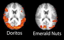 <p>Imagens de ressonância magnética mostram impacto emocional no cérebro de telespectadores que assistem a anúncios publicitários durante o Super Bowl. A imagem da esquerda mostra uma pessoa vendo um comercial de salgadinho respondendo positivamente e a direita é de uma pessoa vendo comercial de nozes reagindo negativamente.</p>
