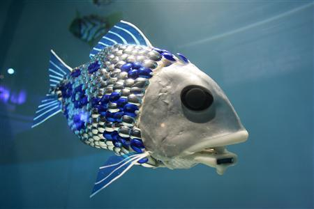 A robot fish developed by British scientists is seen in this handout file photo from BMT Group. REUTERS/Jonas Borg/UPPA/Photoshot