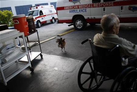 A resident of Key West Convalescent Center waits to be evacuated in preparation for Hurricane Ike in Key West, Florida September 7, 2008. REUTERS/Carlos Barria