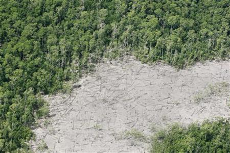 An aerial view of a patch of deforested jungle close to Bacabal, in the northeastern state of Maranhao, in this May 13, 2009 file photo. REUTERS/Paulo Whitaker/Files