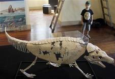 <p>Реконструкция скелета крокодила-броненосца в Ботаническом саду Рио-де-Жанейро 7 июля 2009 года. Органические останки, найденные в Бразилии, принадлежат крокодилу, похожему на огромного броненосца, обитавшего в окрестностях современного Сан-Паулу 90 миллионов лет назад, сообщили исследователи в среду. REUTERS/Bruno Domingos</p>