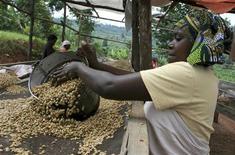 <p>Una donna rwandese asciuga chicchi di caffé vicino Kigali. REUTERS/Hereward Holland</p>