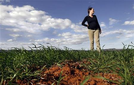 Viticulture manager Kelly Drysdale stands on a dying wheat field owned by her employer Casella Wines near Griffith, 490km (305miles) west of Sydney, August 22, 2007. REUTERS/Tim Wimborne