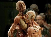 <p>A visitor looks at plastinated human specimens in love-making posture during the media preview of the Koerperwelten ('Body Worlds') exhibition in Zurich September 10, 2009. . REUTERS/Arnd Wiegmann</p>