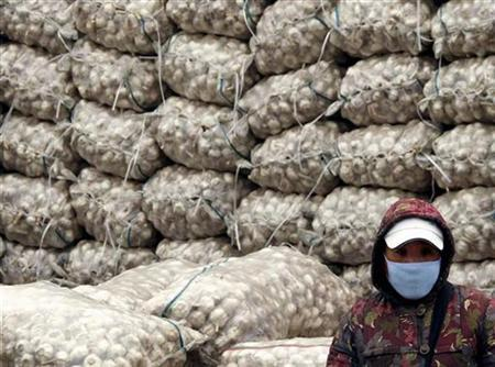 A market vendor, wearing a face mask, stands in front of a large pile of sacks containing garlic at an outdoor food market in Beijing November 25, 2009. REUTERS/David Gray