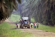 <p>Contadini lavorano in una zona disboscata del Borneo. Foto d'archivio. REUTERS/Ahim Rani</p>