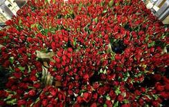 <p>Foto de archivo de un grupo de rosas en FloraHolland, la mayor subasta de flores del mundo realizada en Aalsmeer, Holanda, feb 11 2010. Si se pasó el Día de los Enamorados buscando el amor en internet, usted es uno de cada tres usuarios que considera la web como un buen lugar para encontrar una relación, según un nuevo estudio. REUTERS/Toussaint Kluiters/United Photos</p>