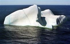 <p>700-метровый айсберг плывет в водах Антарктиды 21 ноября 2002 года. Айсберг размером с Люксембург откололся от ледника Мерц в Антарктиде после столкновения с другим гигантским айсбергом, сообщили ученые в пятницу. REUTERS/Juana Rodriguez EM/SV</p>