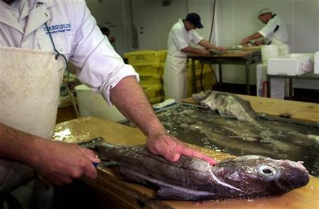 A fishing industry worker guts a haddock in this May 28, 2002 file image. REUTERS/Darren Staples