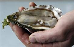 <p>An oysterman displays a freshly-opened oyster from the Bassin d'Arcachon in Andernos-les-Bains near Bordeaux, south-western France, December 21, 2009. REUTERS/Regis Duvignau</p>