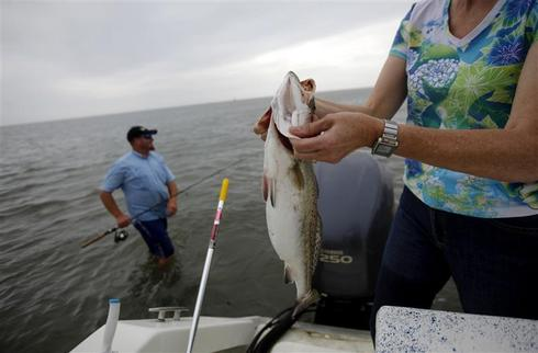 Gulf fishermen in peril