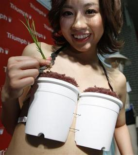 A model wears Triumph International's ''Grow-Your-Own-Rice bra'' in Tokyo May 12, 2010. REUTERS/Yuriko Nakao