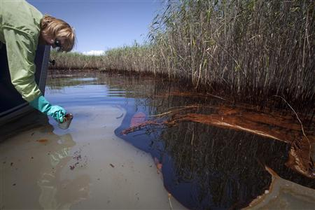 Maura Wood, Senior Program Manager, Coastal Louisiana Restoration for National Wildlife Federation takes a sample of water in a heavily oiled marsh near Pass a Loutre, Louisiana, May 20, 2010. REUTERS/Lee Celano