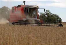 <p>Attività agricole in foto d'archivio. REUTERS/Enrique Marcarian</p>