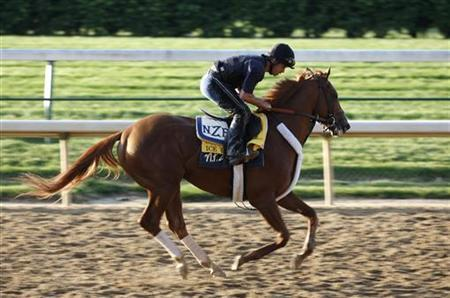 Kentucky Derby hopeful Ice Box with exercise rider Dennis Chavez gallops on the track during early morning workouts at Churchill Downs in Louisville, Kentucky, April 30, 2010. REUTERS/Matt Sullivan