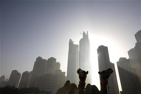 Camels are seen early morning on a beach in the Marina area of Dubai October 16, 2008. REUTERS/Steve Crisp